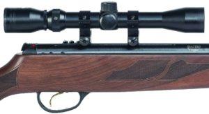powerful air rifles 2020 reviews